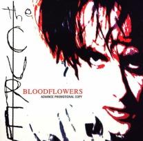 L_Bloodflowers