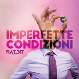 Copertina Imperfette Condizioni